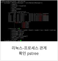 리눅스-프로세스 관계 확인 pstree