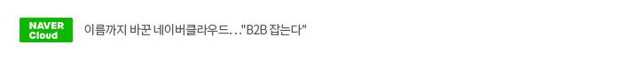 """이름까지 바꾼 네이버클라우드…""""B2B 잡는다"""""""