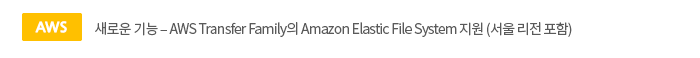 [aws]새로운 기능 ? AWS Transfer Family의 Amazon Elastic File System 지원 (서울 리전 포함)
